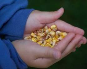 Bean bag jeu toss instructions de construction фото