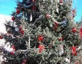 Noël idées concours de décoration фото