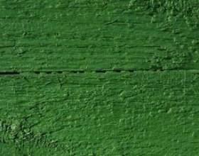 Rideaux qui correspondent aux murs verts фото