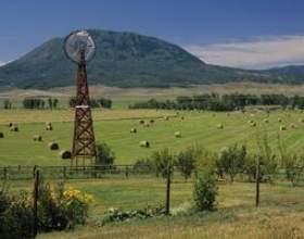 Les programmes gouvernementaux pour les terres agricoles фото