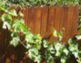 Comment convertir une clôture grillagée à une clôture en bois фото