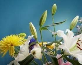 Comment faire pour obtenir les boutons floraux pour ouvrir sur les fleurs fraîches фото
