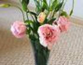 Comment garder des fleurs fraîches dans un vase фото