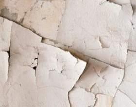 Comment se débarrasser correctement des anciennes peintures et produits chimiques фото