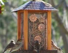 Comment arrêter les graines d`oiseaux de plus en plus sous un chargeur фото
