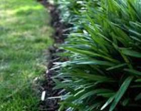 Comment utiliser la pelouse bordure planche à bender фото