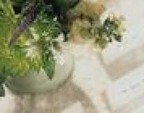Vase mariage idées de pièce maîtresse de l`ouragan фото