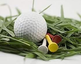 Des idées pour des arrangements de fleurs en utilisant des balles de golf фото