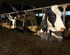 Liste des agriculture carrières et leurs salaires фото