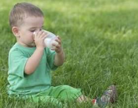 Substituts du lait pour les tout-petits фото