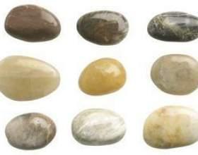 Activités préscolaires sur les rochers et pierres фото
