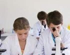 Activités scientifiques amidon pour enfants sta-de flo фото