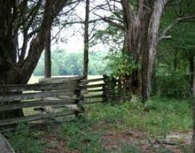 Styles de clôtures journal фото