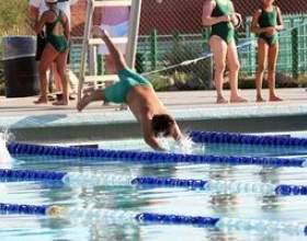 Piscine lois piscine de clôture dans pennsylvania фото
