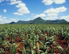 Les effets de l`évaporation sur la production agricole фото