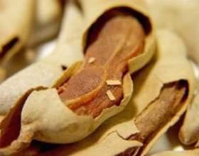 Utilisations de graines de tamarin фото