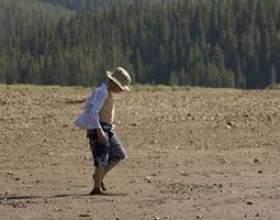Qu`est-ce que l`épuisement des sols? фото